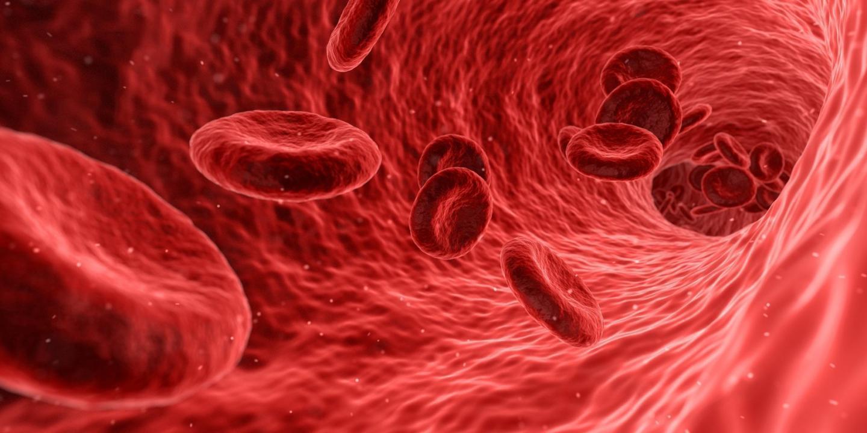 掺杂促红细胞生成素可以减轻的严重进展