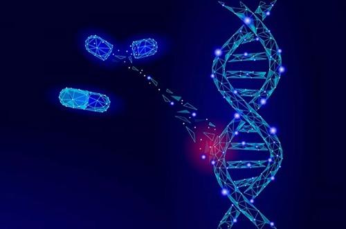 在圣路易斯流行的肠道病毒D68的基因组测序