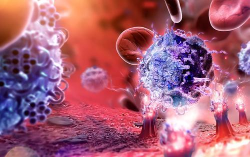 研究人员将2种免疫疗法合并为一种更有效的疗法