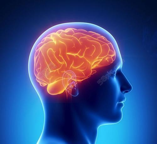 为什么您的脑部寄生虫不会使您生病