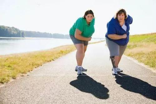 来自贫困社区的孩子成年后更容易肥胖