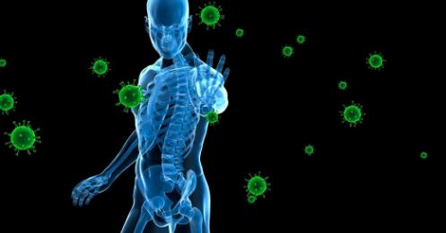 研究发现免疫系统如何知道要攻击哪些微生物
