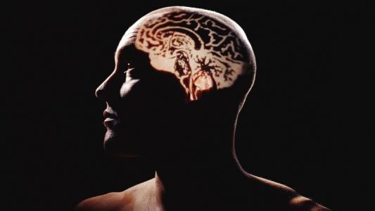 即使脑震荡的症状消失后 他们仍需要更长的时间才能恢复反应时间