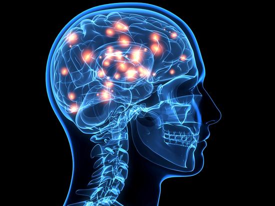 新报告详细介绍了寨卡病毒引起的产前和产后大脑缺陷