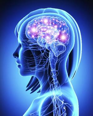 中风后不久对患者进行分析可以帮助将大脑区域与语音功能联系起来