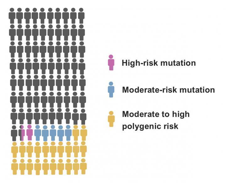新型基因组工具可提高乳腺癌风险评估的准确性