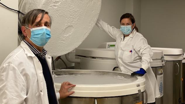 研究人员发现人体也会发射免疫细胞进行反击