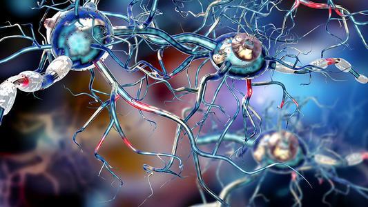 免疫细胞的重编程增强了脑癌临床前模型中放疗的效果