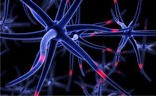 研究揭示了叛逆蛋白如何破坏阿尔茨海默氏病的脑细胞功能
