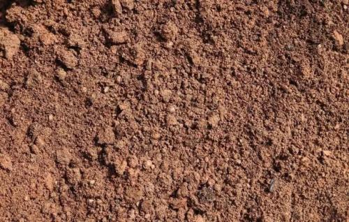 几十年来土壤动物生态的难题解决了