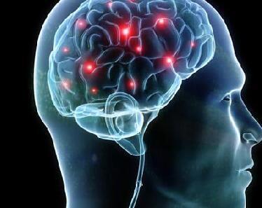 研究发现昼夜节律和睡眠丧失的影响在大脑区域各不相同