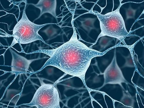 研究发现脑炎症与罕见的早发型痴呆有关