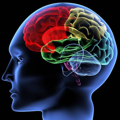 多个大脑区域缓和并将抑郁情绪与疼痛联系起来