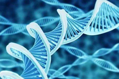 研究人员发现可能增加ALS风险的新基因