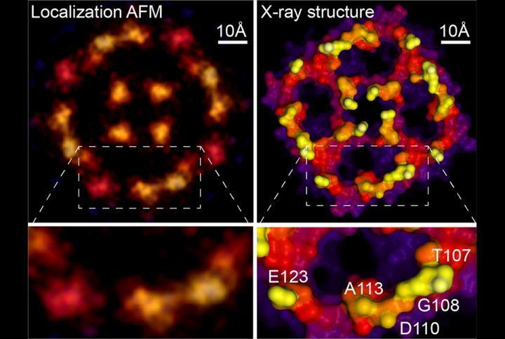 新的超分辨率显微镜方法接近原子尺度