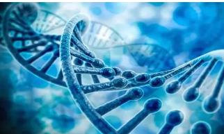 测试多个基因可以导致更好的医药产品效果