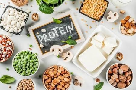并非所有的膳食蛋白质都是一样的