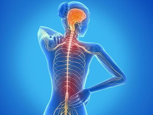 多发性硬化症通常在第一个症状出现数年后才被诊断出来