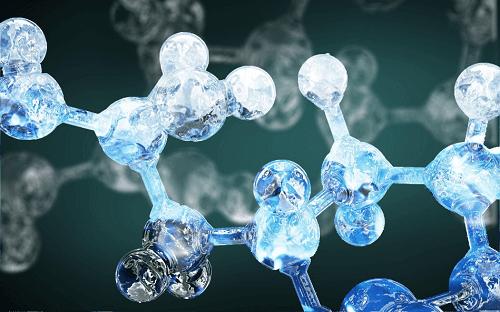研究发现血液中的常见蛋白质使人类受精和抵抗感染