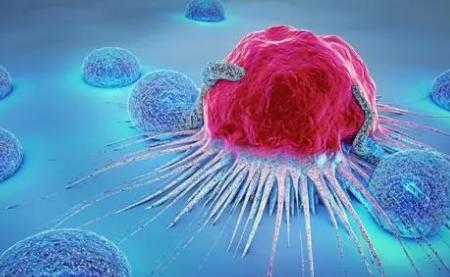 科学家实时观察癌症如何演变