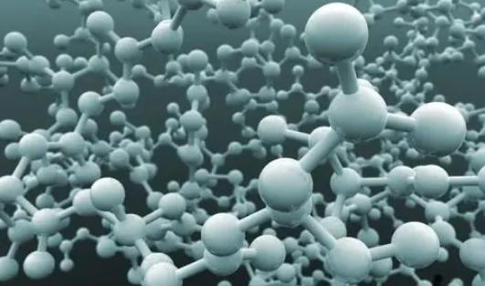 一种美味的蛋白质可能会导致治疗代谢和免疫疾病的新方法
