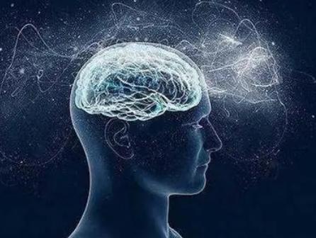 环境因素如何为年轻的大脑提供条件