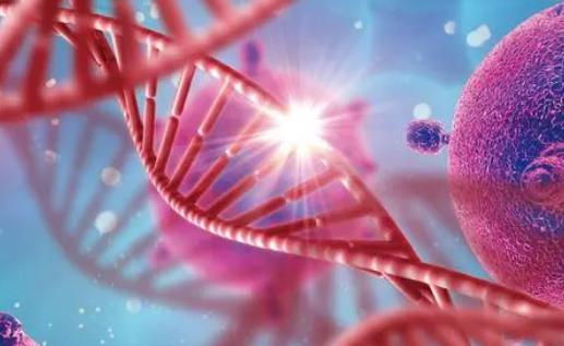 Mayo Clinic研究建议对肺癌患者进行MET癌基因筛查