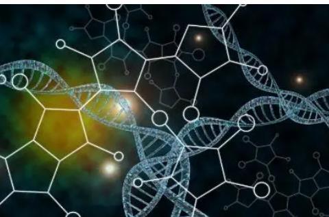 遗传学在第一次性行为和出生年龄中起着重要作用