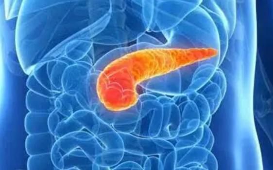 科学家揭示了胰腺癌的新治疗弱点