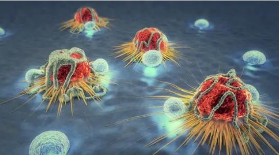 研究人员发现扩散到淋巴结的癌细胞如何避免免疫破坏
