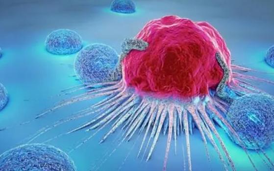 为什么相同的突变会导致不同类型的癌症