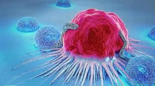 新计划旨在通过免费筛查和当天结果减少可预防的癌症