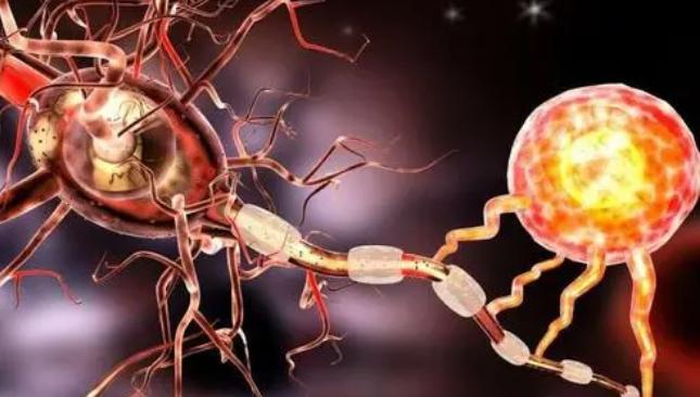脊髓液生物标志物可检测活体患者的神经和阿尔茨海默病