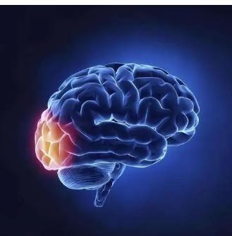 部分严重脑损伤患者的长期预后好于预期