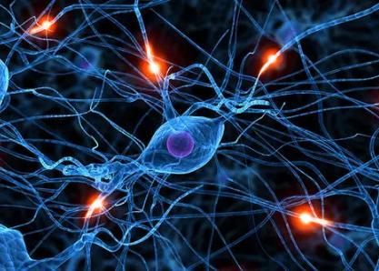 科学家将儿童癌症幸存者的虚弱和神经认知能力下降联系起来