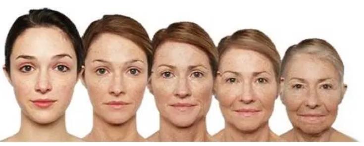研究使科学家离解开衰老之谜又近了一步