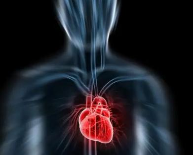 研究增加了对主动脉瘤背后遗传学的了解
