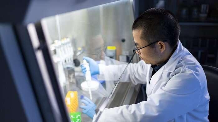 成像方法预测干细胞分化为心肌细胞的能力