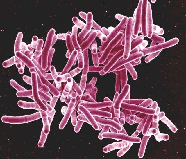 科学家发现结核病抑制免疫力的惊人新方法