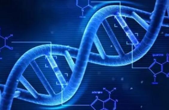 新发现的基因突变导致罕见的早发性炎症性肠病