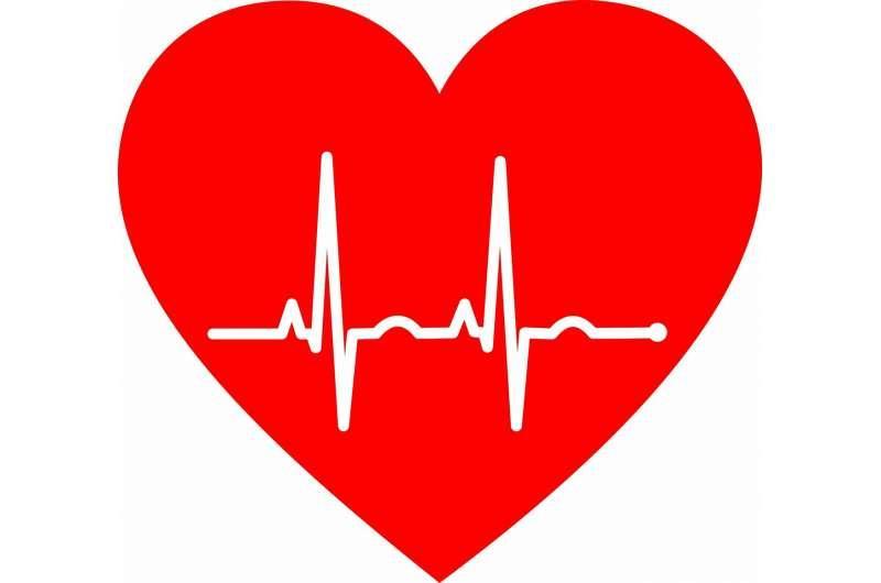 每天减少250卡路里热量并锻炼可以改善肥胖老年人的心脏健康