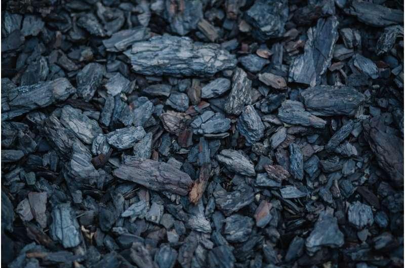 用煤或木头做饭会增加患主要眼病的风险