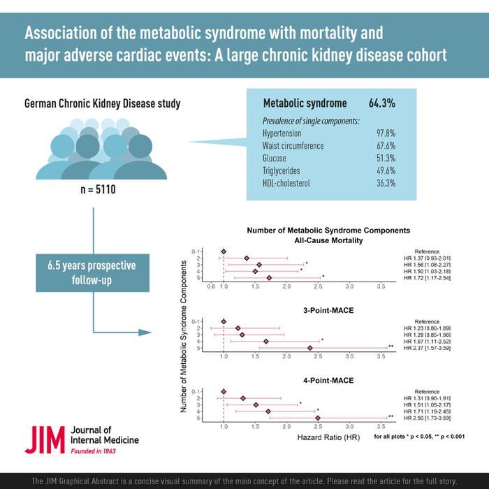 研究将代谢综合征与成人肾脏疾病的不良健康结果联系起来
