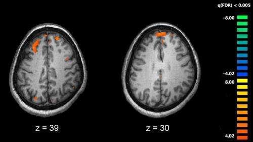 一种使用血液测试预测精神分裂症风险的机器学习方法