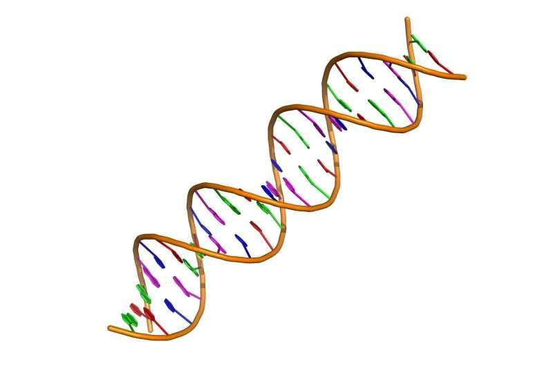 研究确定了与心脏病有关的DNA特征