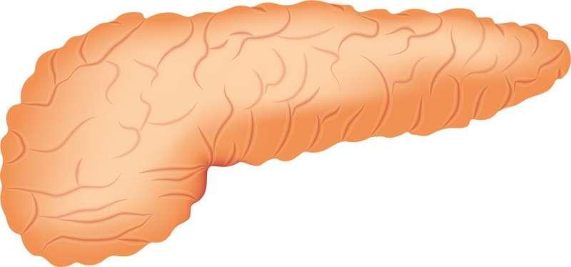 首个人工胰腺试验用于门诊2型糖尿病患者