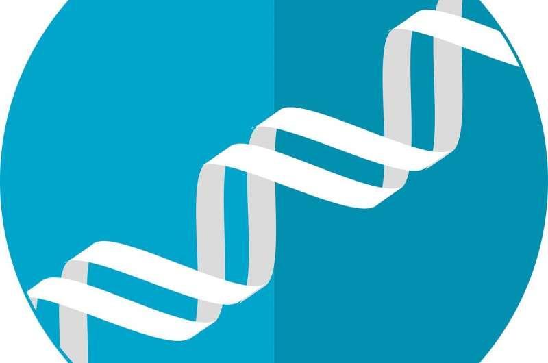 研究人员发现了与女性延长生殖寿命有关的新基因