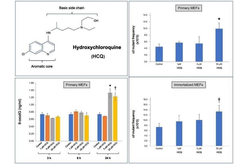 研究指出羟氯喹对哺乳动物细胞的潜在毒性