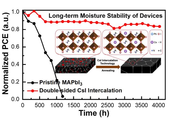 高稳定性钙钛矿光伏的通用插层策略