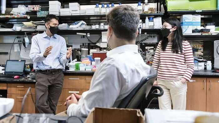 研究人员回收细胞的能量中心以预防帕金森病